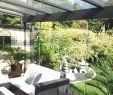 Japanischer Garten Ferch Frisch 26 Einzigartig Marderabwehr Garten Das Beste Von