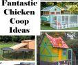 Kaninchen Im Garten Das Beste Von Fantastic Chicken Coop Ideas