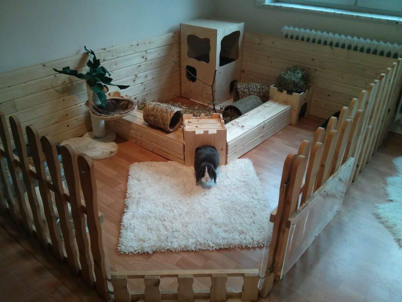 Kaninchen Im Garten Luxus Rabbit Room for Inside Tier Und Garten