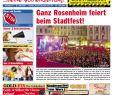 Katzensicherer Garten Luxus Rosenheimer Blick Ausgabe 24