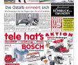 Kino Zoologischer Garten Frisch Gmünder Anzeiger Kw 45 by Media Service Ostalb Gmbh issuu
