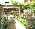 Kleiner Garten Einzigartig Kleiner Reihenhausgarten Gestalten — Temobardz Home Blog