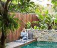 Kleiner Garten Mit Pool Frisch 53 Kleiner Minimalistischer Pool Mit Einer Schönen Einer