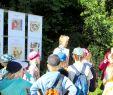Kleines Fest Im Großen Garten Programm 2016 Inspirierend Weininstitut Gmbh