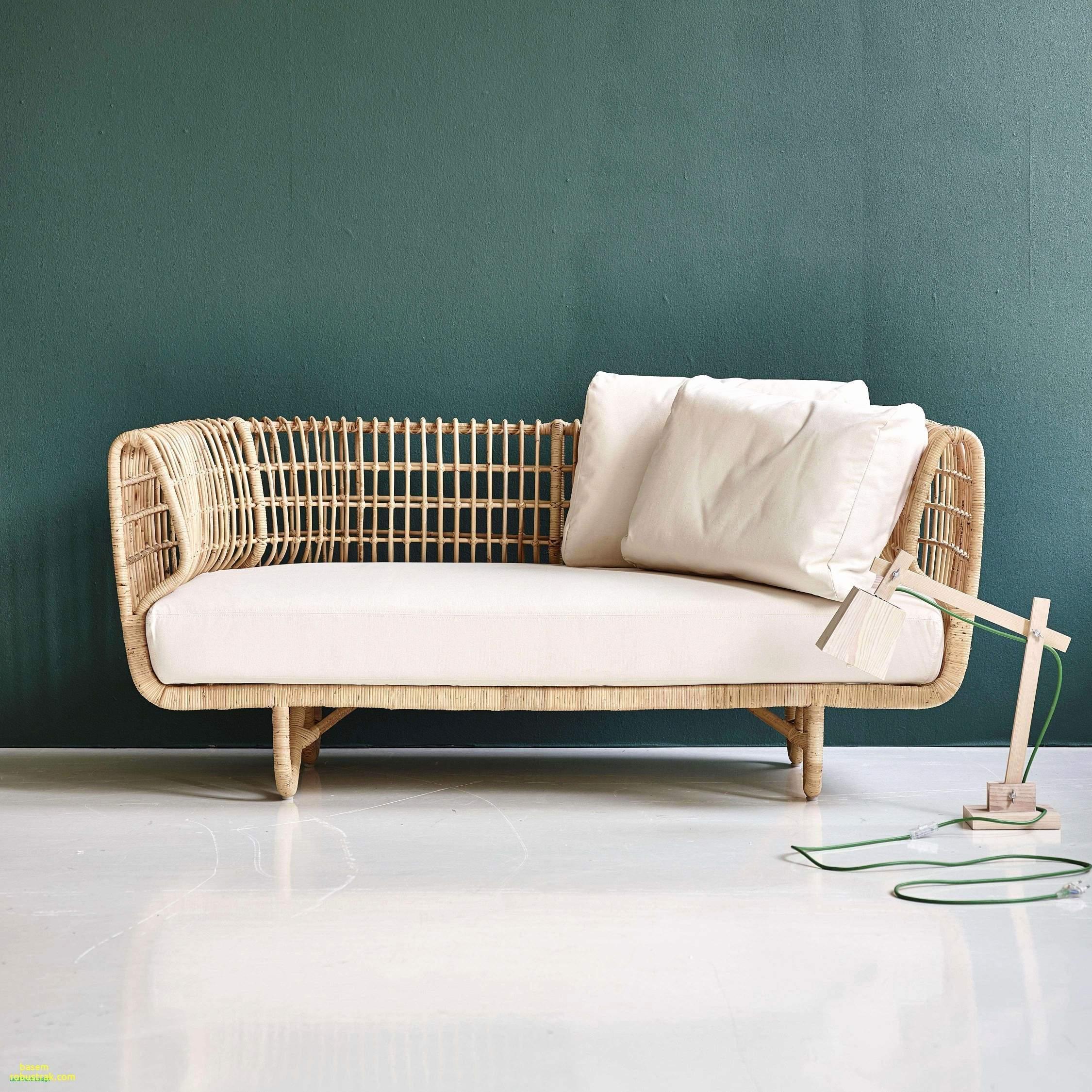 Kot Im Garten Von Welchem Tier Einzigartig 35 Luxus Couch Garten Einzigartig