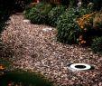 Kugelleuchte Garten 60 Cm Frisch Led Lampen Für Garten Einzigartig Kugellampe Garten Schön