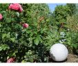 "Kugelleuchte Garten Inspirierend Garten Kugelleuchte Erdspieß ""granit 28"" Ip44 230v 1 5m Kabel E27 Fassung"