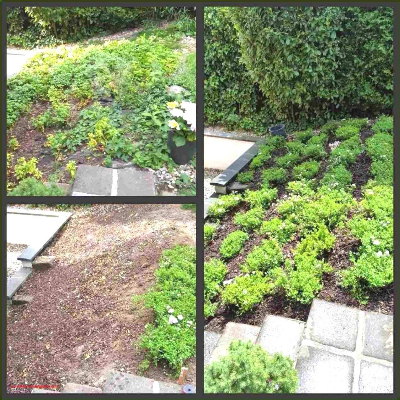 Kunst Für Den Garten Einzigartig Gartendeko Selbst Machen — Temobardz Home Blog