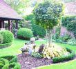 Landhaus Garten Blog Frisch Kleiner Reihenhausgarten Gestalten — Temobardz Home Blog