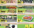 Leipzig Botanischer Garten Neu Gartenfreund Sicherheit Zum Nulltarif Gibt Es Nicht Pdf