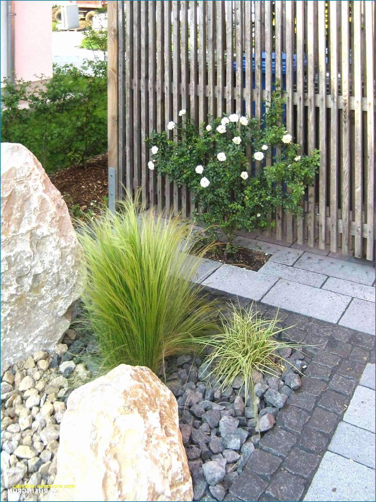 Liegebank Garten Elegant 31 Elegant Blumen Im Garten Elegant