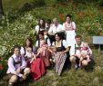 Löcher Im Garten Neu Gmbh