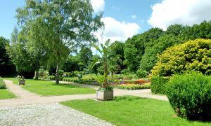40 Neu Loki Schmidt Garten Hamburg Inspirierend