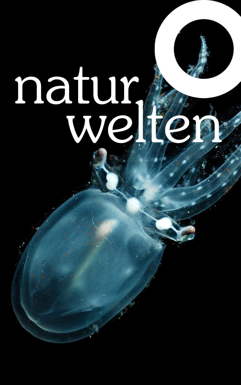 headerbild mobile naturwelten 02 1 1000x1600