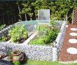 Mediterranen Garten Anlegen Das Beste Von Haus Plant Ideen