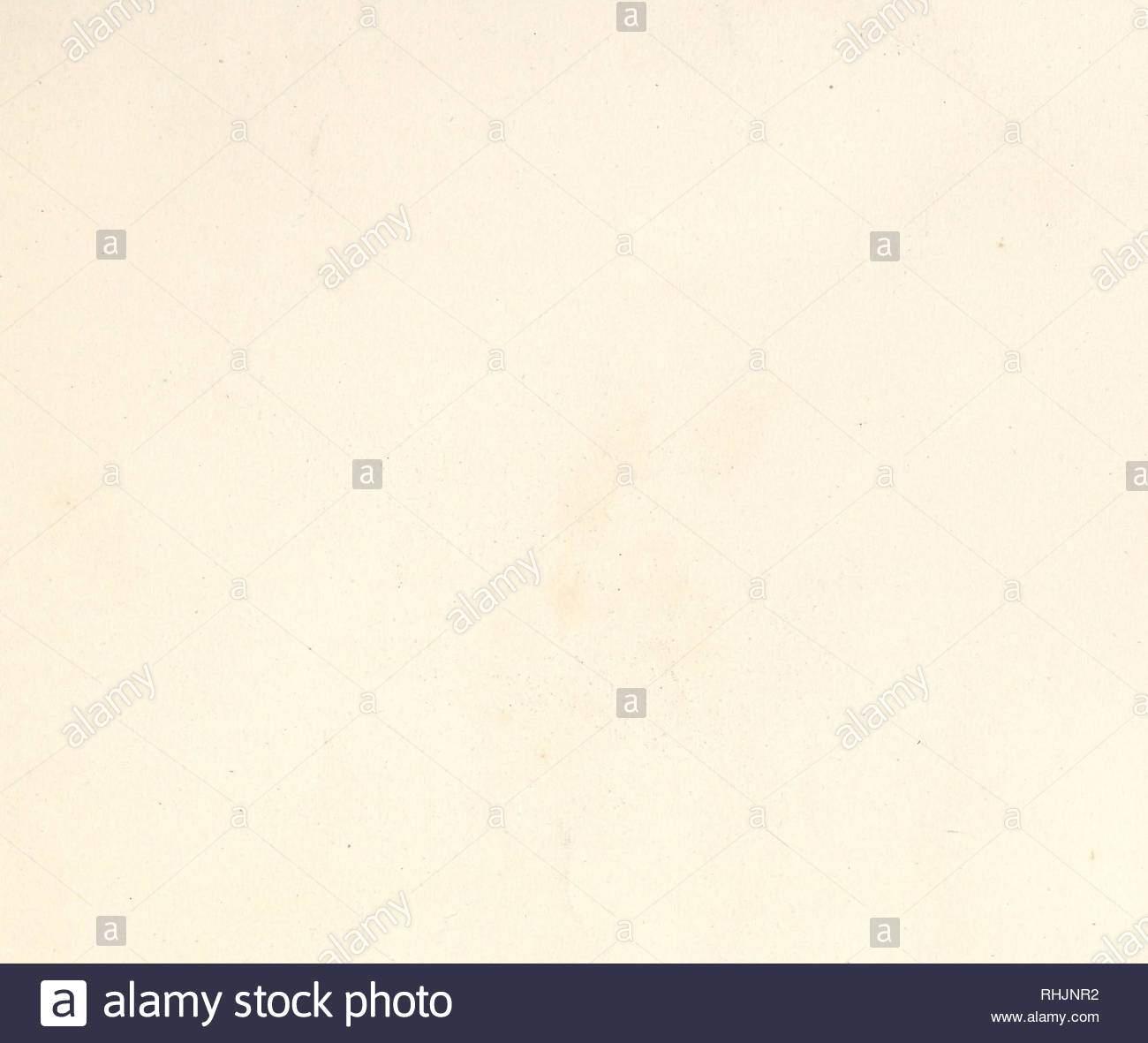 vogel europas bildliche werke vogel lt5 3 itrimtvfrmfrwotfwwamp eru and rwtyj folt and vd meabo pieper antkas prat de sis bachst jivntedsfry o mazamp najriddamp bitte beachten sie dass se bilder sind von der gescannten seite bilder digital fur lesbarkeit verbessert haben mogen farbung und aussehen ser abbildungen konnen nicht perfekt dem original ahneln extrahiert gould john 1804 1881 london gedruckt von r und jetaylor pub durch den autor rhjnr2