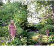 Mein Schöner Garten forum Luxus Meet Maggie
