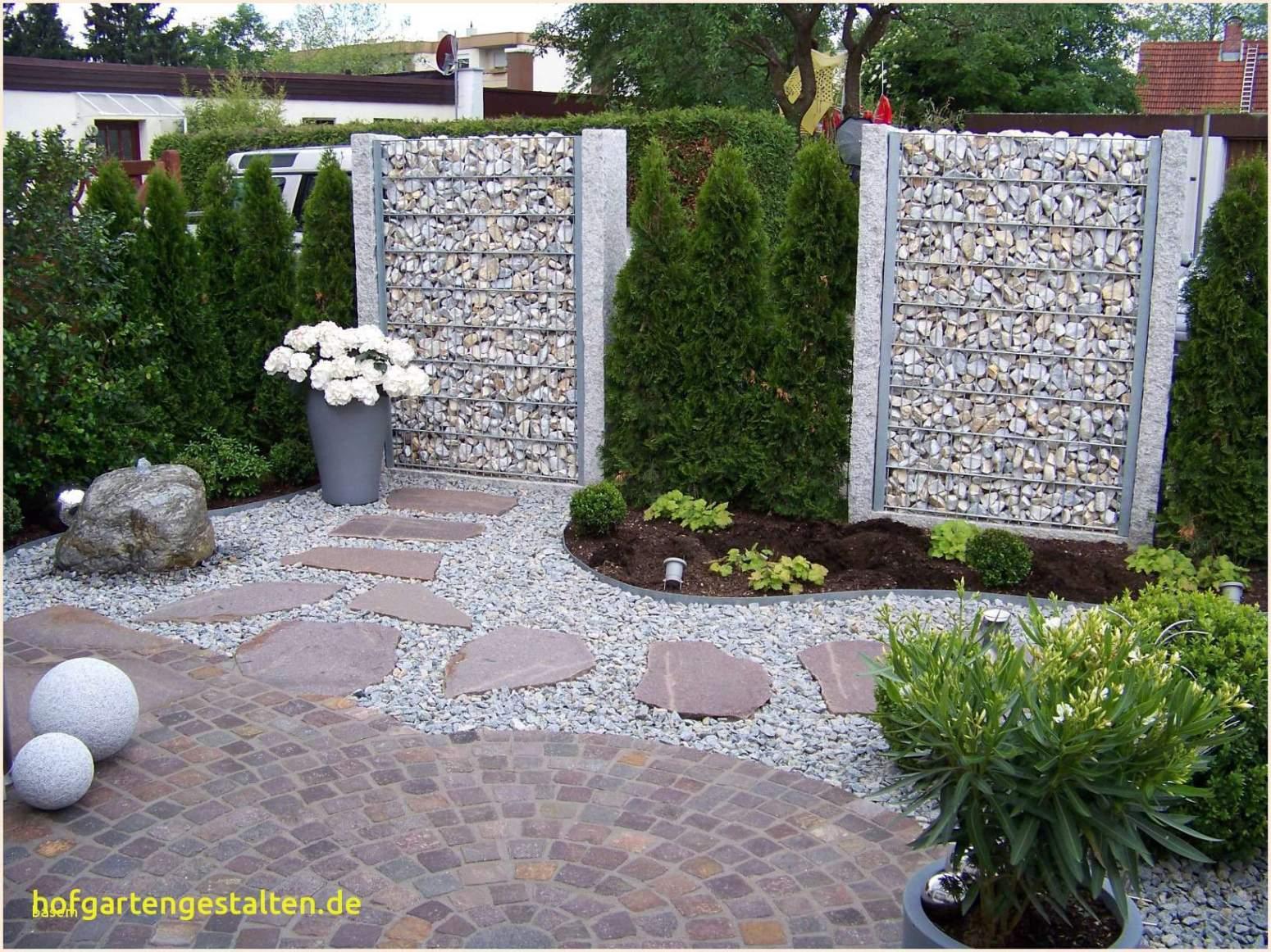 Mein Schöner Garten Zeitschrift Neu Pflanzen Als Sichtschutz Im Kübel — Temobardz Home Blog