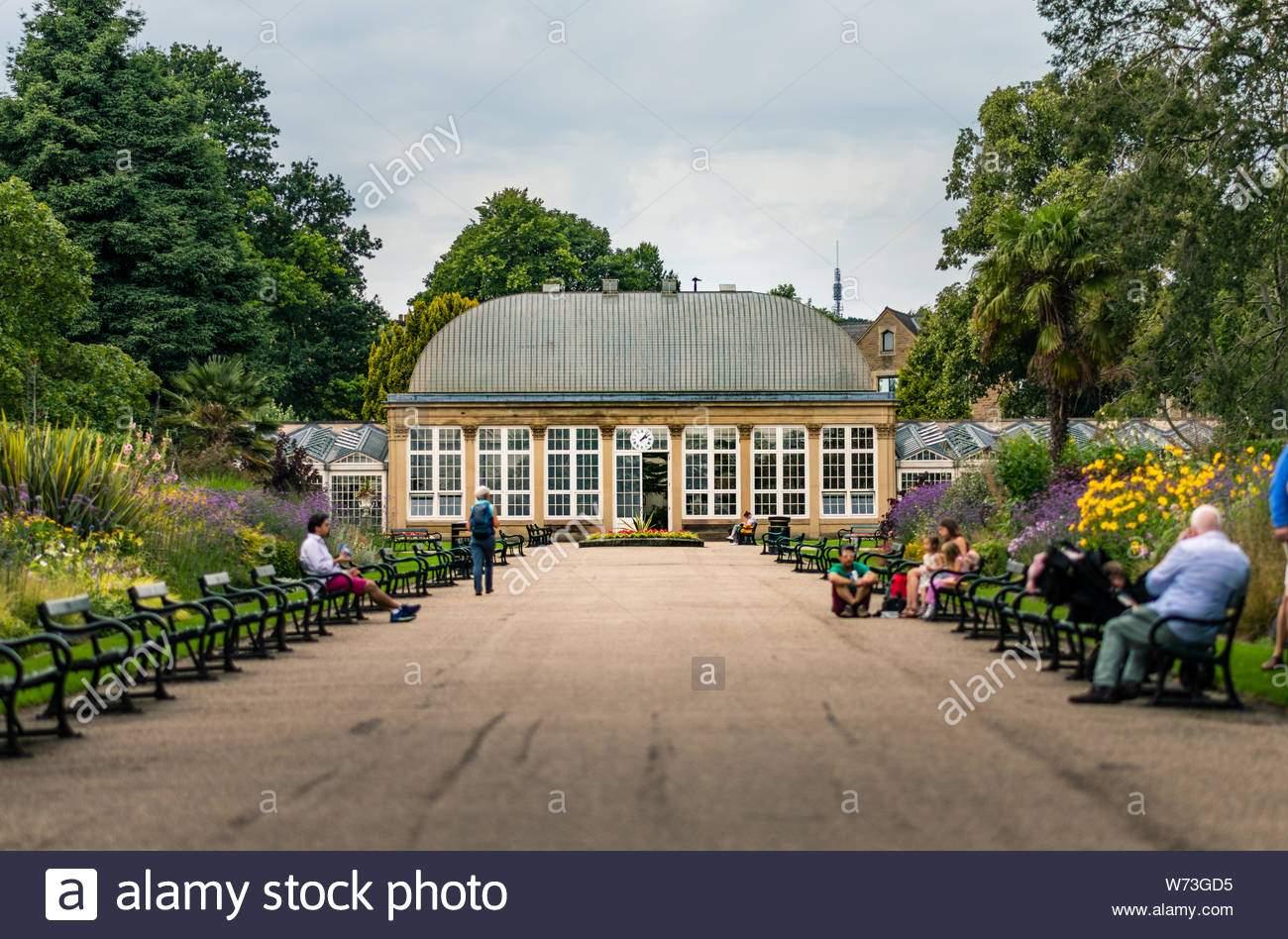 gewachshaus in sheffield botanischer garten sommer 2019 w73gd5