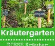 Messe Leipzig Haus Garten Freizeit Luxus 40 Genial Selbstversorger Garten Anlegen Genial