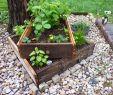 Mischkultur Im Garten Reizend ✅ A7275c1b2c 26 Of Garten Anpflanzen January 2020