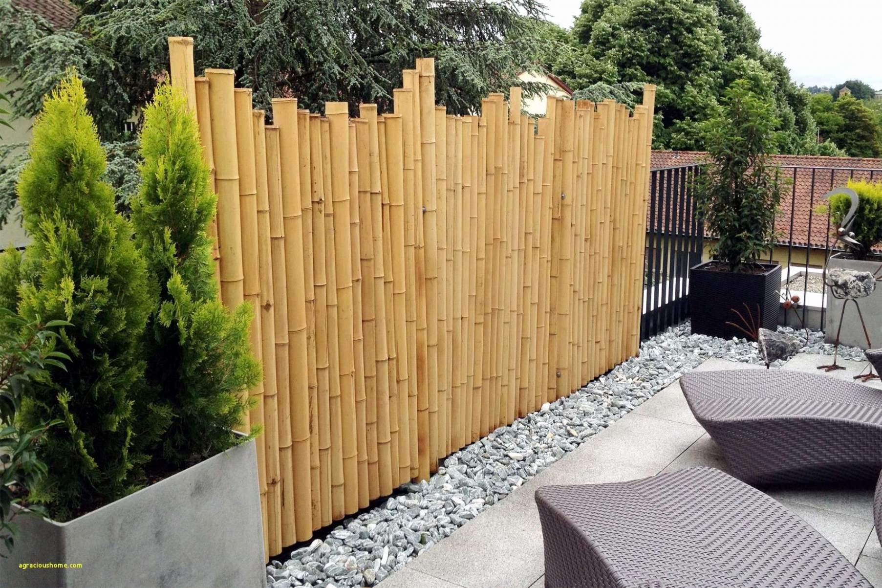 Moderner Garten Sichtschutz Schön Terrasse Aus Beton — Temobardz Home Blog