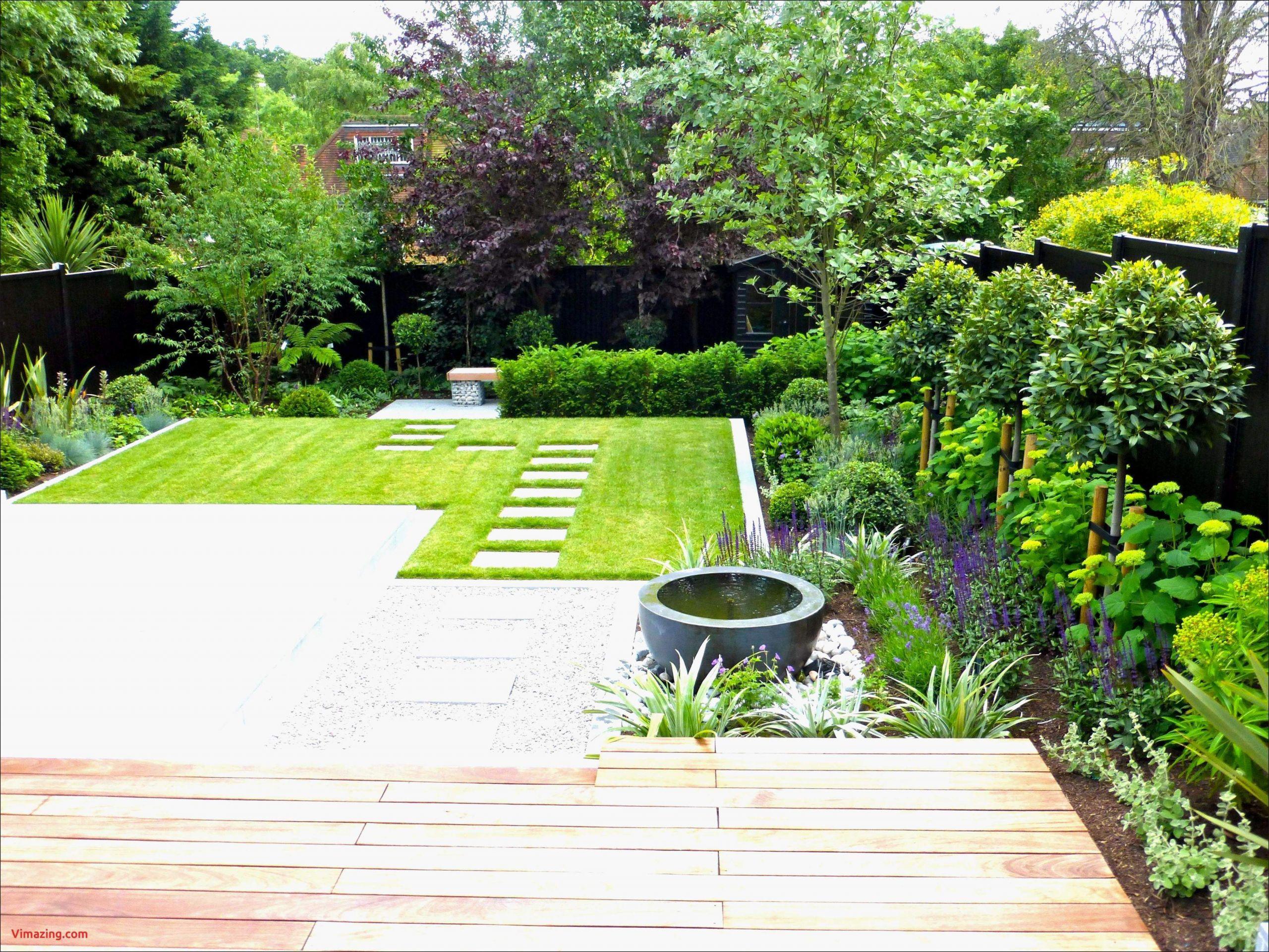 luxus moderner sichtschutz fur garten luxus pflanzen fur sichtschutz pflanzen fur sichtschutz