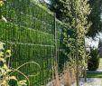 """Moderner Sichtschutz Im Garten Luxus Zaunblende Hellgrün """"greenfences"""" Balkonblende Für 180cm"""