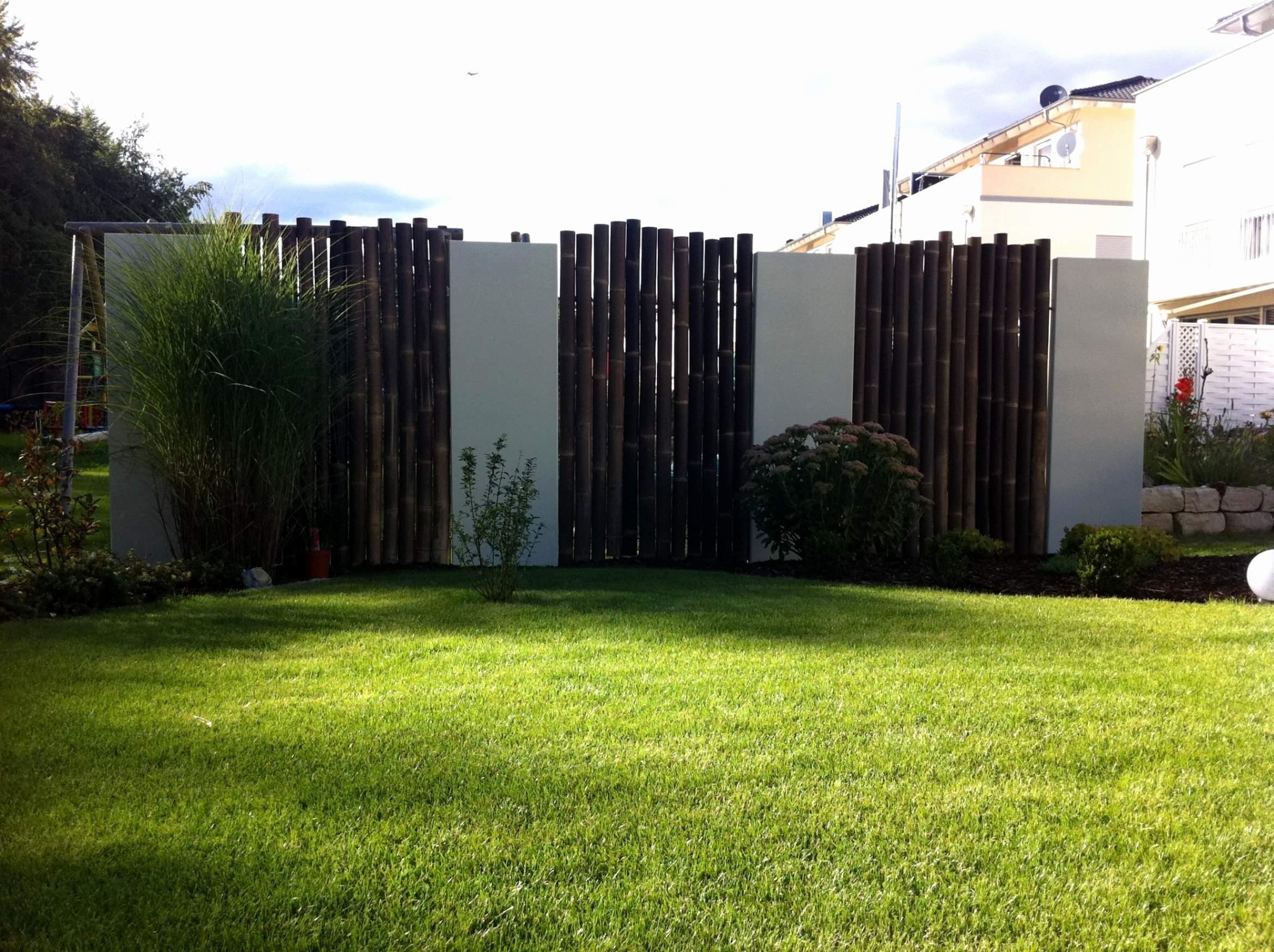 Moderner Sichtschutz Im Garten Schon Sichtschutz Pflanzen Terrasse