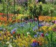 Monet Garten Einzigartig 65 Fresh Beautiful Spring Garden Landscaping for Front Yard