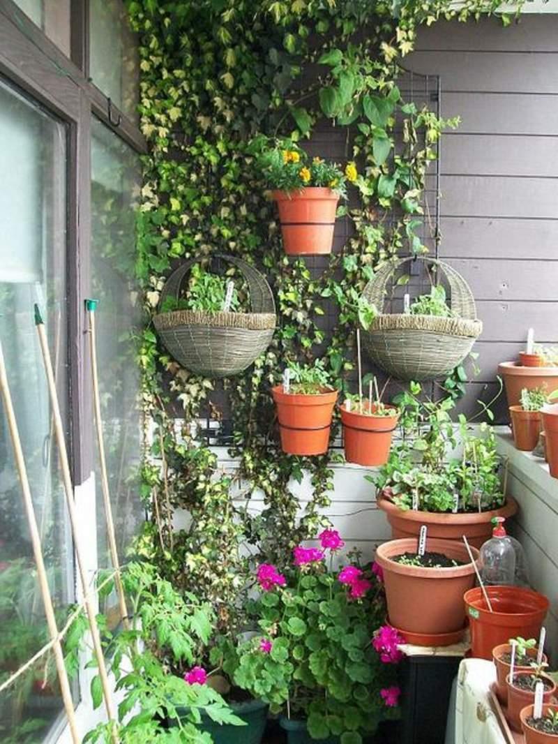 garten busche frisch sadzenie balkonu 60 oryginalnych pomysac282c2b3w of garten busche 2