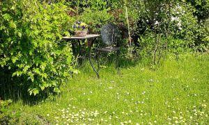 30 Elegant Natur Garten Schön