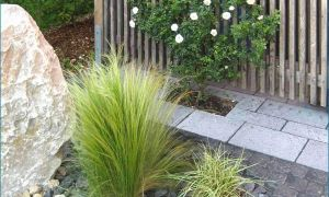 28 Neu Natur Und Garten Luxus