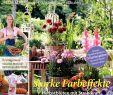 Naturnaher Garten Pflegeleicht Anlegen Elegant Calaméo Mein Para S 4 2018 Gbv