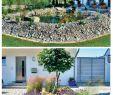 Naturnaher Garten Pflegeleicht Anlegen Schön Pflegeleichter Garten