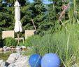 Nestroy Garten Schön Bergfex Landgut Thalerhof Pension Telfes Skizentrum