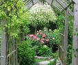 Obelisk Garten Einzigartig 20 Arbor Trellis & Obelisks Ideas Gardening