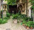 Offene Gärten Rheinhessen Das Beste Von Fene Gärten In Rheinhessen 2016 – Die Galerie Unter Dem