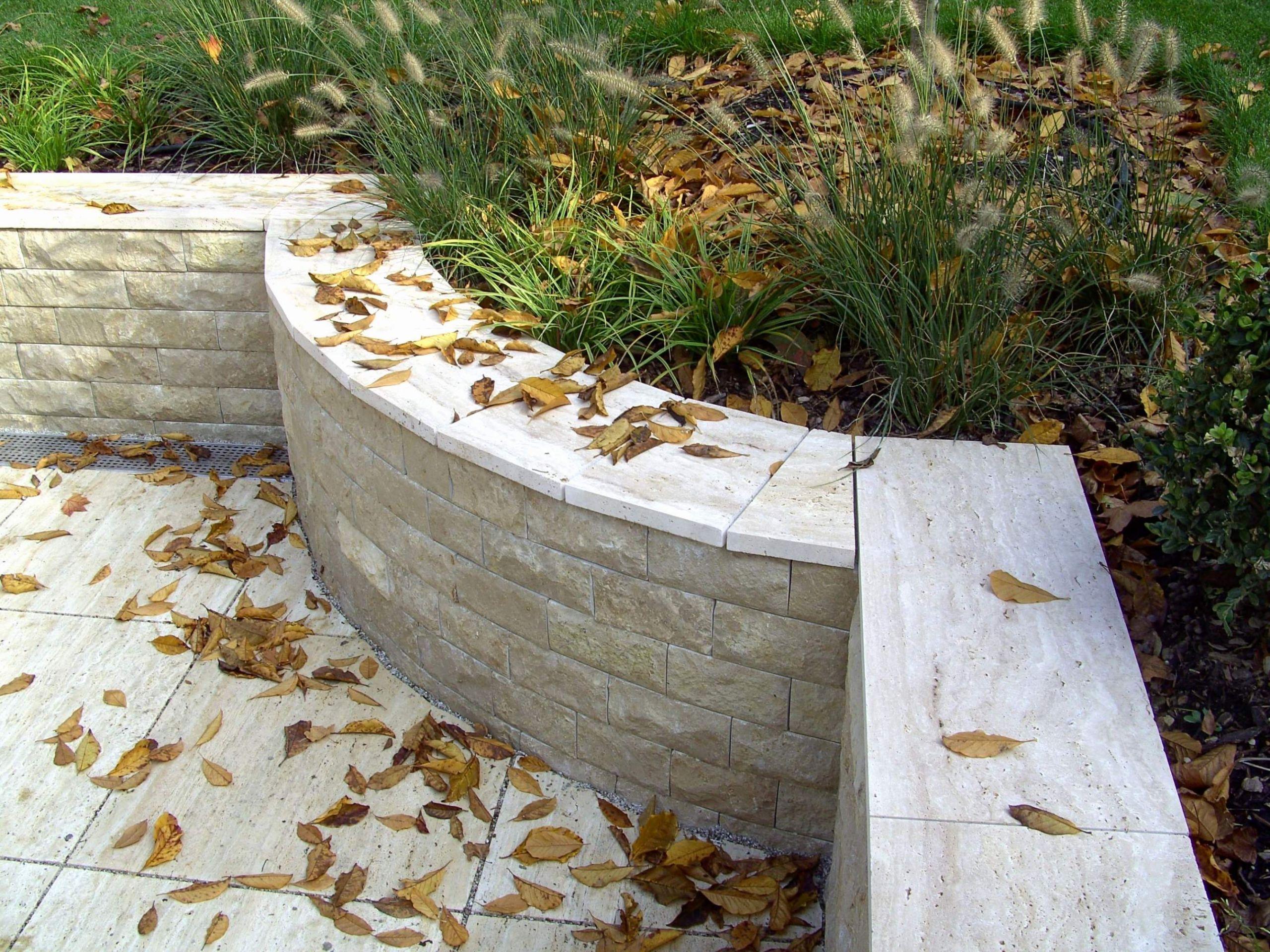 garten pflanzen sichtschutz genial gartenpflanzengarten pflanzen pflanzen als sichtschutz terrasse pflanzen als sichtschutz terrasse