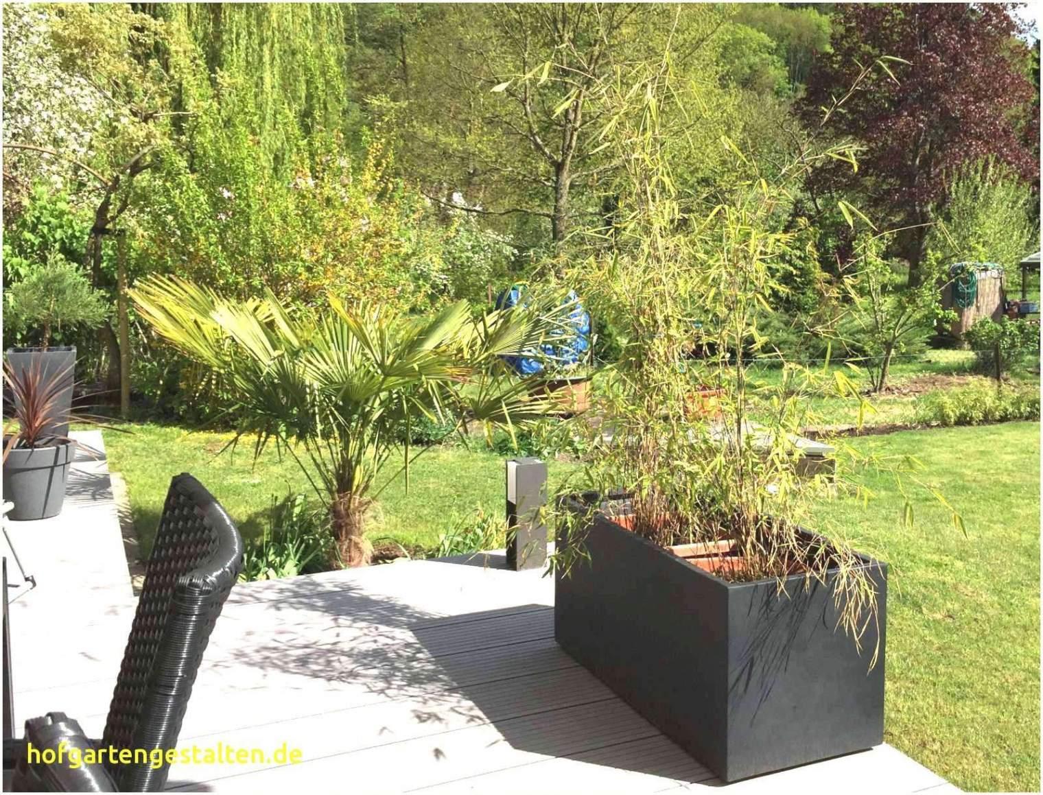 28 Elegant Paletten Garten Sichtschutz Genial