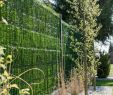 """Paletten Garten Sichtschutz Schön Zaunblende Hellgrün """"greenfences"""" Balkonblende Für 180cm"""