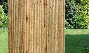 26 Elegant Paravent Garten Frisch