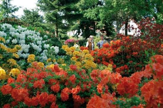 Attraction Review g d Reviews or30 Park der Gaerten Bad Zwischenahn Lower Saxony