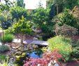 Park Der Gärten In Bad Zwischenahn Elegant Umgebung
