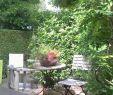 Park Der Gärten In Bad Zwischenahn Reizend Park Der Gärten Bad Zwischenahn Ammerland
