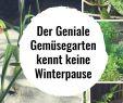 Permakultur Garten Anlegen Neu Pin Von Claudia Findeklee Auf Garten Pflanzen Und Co