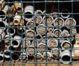 Permakultur Garten Anleitung Genial Insektenhotel Wikiwand