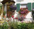 Permakultur Garten Das Beste Von Jahresprogramm Kreisverband Für Gartenbau Und Landespflege