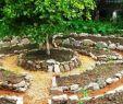 Permakultur Garten Das Beste Von Permakultur Gartenarbeit Mit Hackschnitzel Laubdecke Und