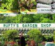 Permakultur Garten Planen Einzigartig Kool Krop Time Rufty S Garden Shop 1335 W Innes St